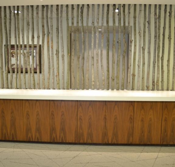 American-Forrest-Foundation-ENTRANCE-ELEVATOR-BANK-Photo-3-of-3-1
